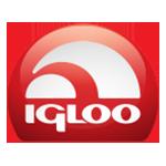 Igloo