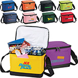 6-Pack Insulated & Water Resistant Cooler