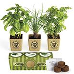 Herb Garden Set