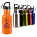17 oz. Stainless Bottle