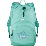 High Sierra Synch Backpack