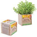 Wooden Cube Planter Kit