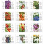 2018 The Old Farmer's Almanac Gardening Wall Calendar - Stapled