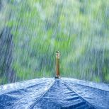 totes Automatic Stick Umbrella